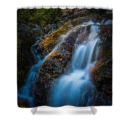 Small Mountain Stream Falls Shower Curtain