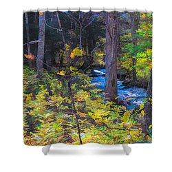 Small Stream Through Autumn Woods Shower Curtain