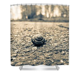 Small Traveler Shower Curtain