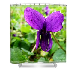 Small Violet Flower Shower Curtain by Jean Bernard Roussilhe