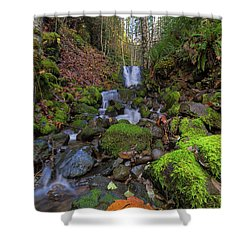 Small Waterfall At Lower Lewis River Falls Shower Curtain by David Gn