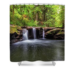 Small Waterfall At Rock Creek Shower Curtain by David Gn