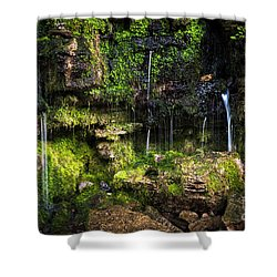 Shower Curtain featuring the photograph Small Waterfall by Elena Elisseeva