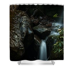 Small Waterfall Shower Curtain by Jay Stockhaus