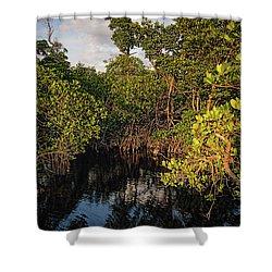 Small Waterway In Vitolo Preserve, Hutchinson Isl  -29151 Shower Curtain