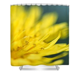 Shower Curtain featuring the photograph Small World by Amy Tyler