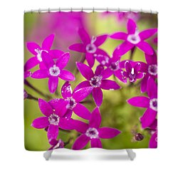 Smell Purple Shower Curtain