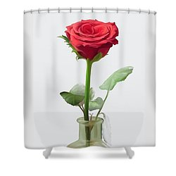 Shower Curtain featuring the painting Smell The Rose by Ivana Westin