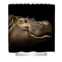 Shower Curtain featuring the photograph Smile by Cheri McEachin