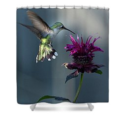 Smiles In The Garden Shower Curtain by Everet Regal