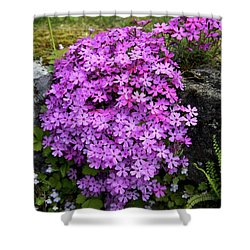 Living Bouquet Shower Curtain by Colleen Williams