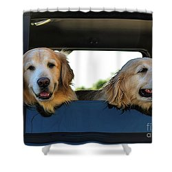 Smiling Dogs Shower Curtain