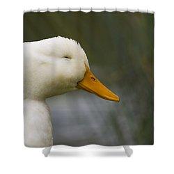 Smiling Pekin Duck Shower Curtain