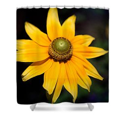 Smiling Sun Shower Curtain