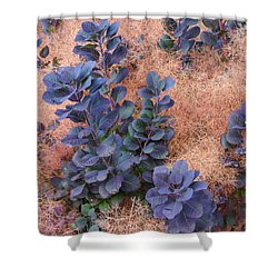 Smoke Bush Shower Curtain