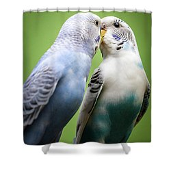 Smokey And Dusty Shower Curtain