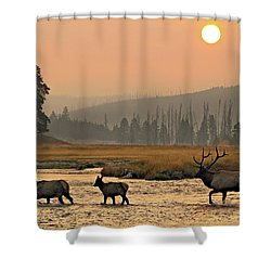 Smokey Elk Crossing Shower Curtain