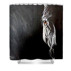 Smokey Shower Curtain by Maris Sherwood