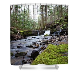 Smokey Mountains 4 Shower Curtain