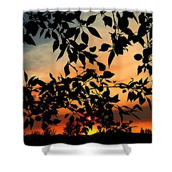 Smoked Filled Sunset Shower Curtain by Janice Westerberg