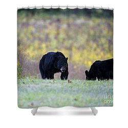 Smoky Mountain Black Bears Shower Curtain