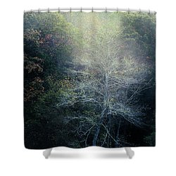 Smoky Mountain Trees Shower Curtain