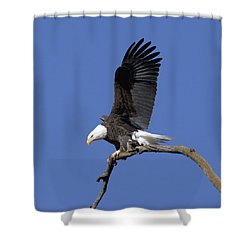 Smooth Landing 2 Shower Curtain by David Lester
