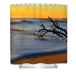 Smooth Move Shower Curtain by Dianne Cowen