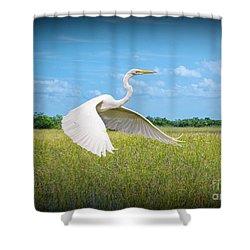 Smooth Sail Shower Curtain