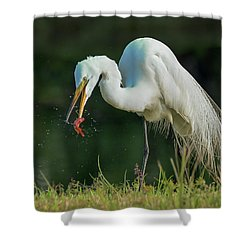 Snack Shower Curtain