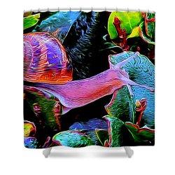 Snail 12 Shower Curtain