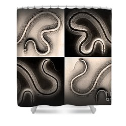 Snake Bones Shower Curtain