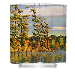 Snake Island In Fall Sunset Shower Curtain by David Gilmore