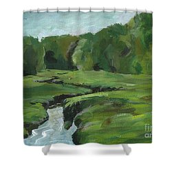 Snake Like Creek 2 Maine Shower Curtain by Claire Gagnon