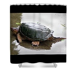 Snapping Turtle Shower Curtain