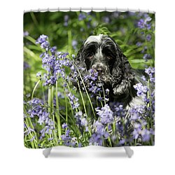 Sniffing Bluebells Shower Curtain