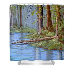 Snooli Creek 2 Shower Curtain