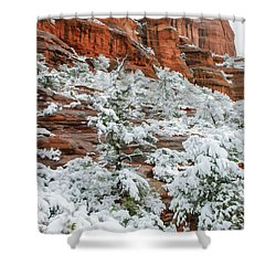 Snow 06-051 Shower Curtain by Scott McAllister