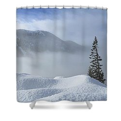Snow And Silence Shower Curtain by Lynn Hopwood
