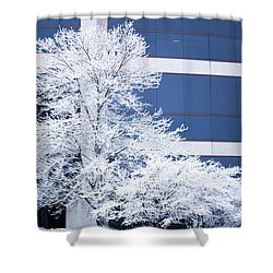 Snow Art Shower Curtain