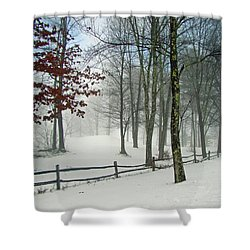 Snow Begins Shower Curtain by Betsy Zimmerli