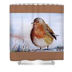 Snow Bird Shower Curtain