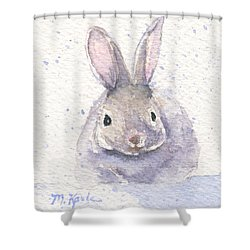 Snow Bunny Shower Curtain