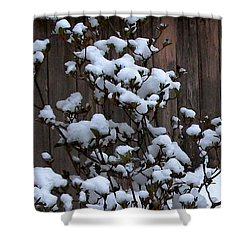 Snow Bush Abstract Shower Curtain