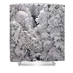 Shower Curtain featuring the photograph Snow Coat by Alex Grichenko