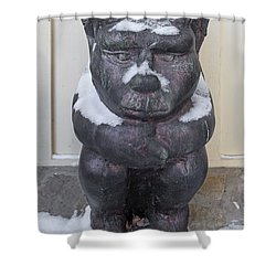 Snow Covered Chimera Shower Curtain