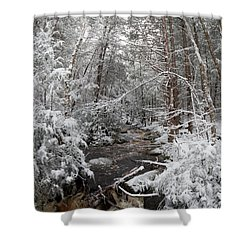 Snow Covered River Shower Curtain