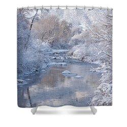 Snow Creek Shower Curtain