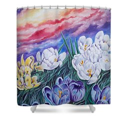 Snow Crocus Shower Curtain