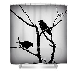 Snow Crows Shower Curtain